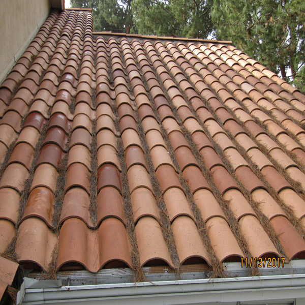Roof Cleaning Debris Roof Cleaning