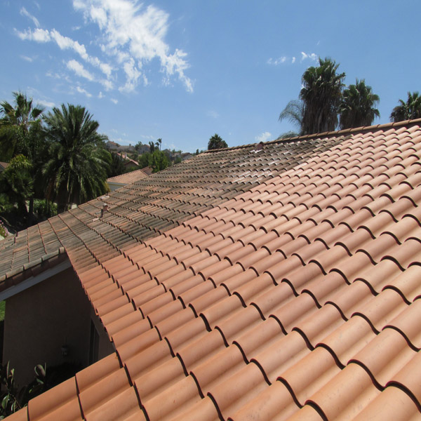 Roof Cleaning Before & After Roof Cleaniing